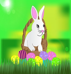 Beautiful white easter bunny in the wicker basket vector