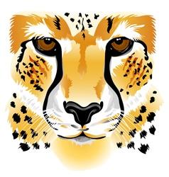 Cheetah face vector