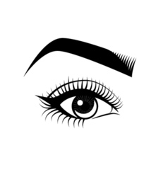 Female eye and eyebrow makeup the beauty industry vector