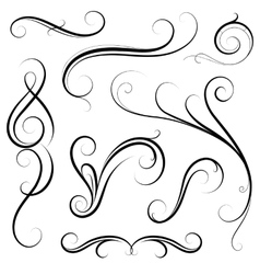 Set of calligraphic swirls vector