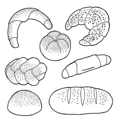 Set of baked breads vector
