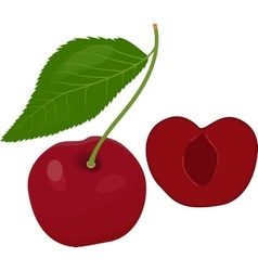 Ripe red cherry berries with leaves vector image vector image