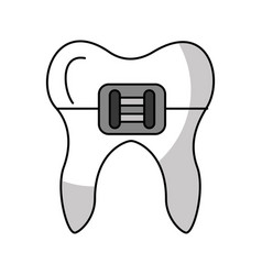Human tooth with bracket vector