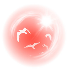 Red sky with birds vector