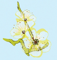 yellow flower branch vector image