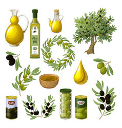 cartoon olive oil elements set vector image vector image