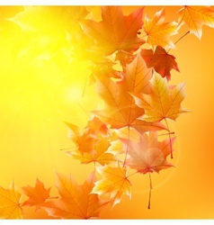 Delicate autumn sun with glare on gold sky vector image