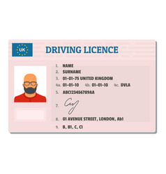 English driving license icon flat style vector
