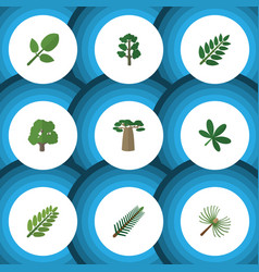 Flat icon nature set of rosemary forest leaves vector