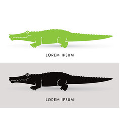 Crocodile side view vector