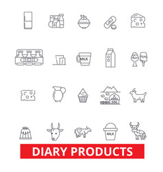 Diary products milk butter cream cheese vector