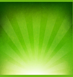 Green sunburst background vector