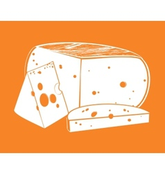 Pieces of cheese vector