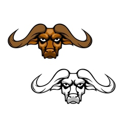 Buffalo head mascot vector image