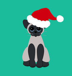 cat in santa claus hat vector image