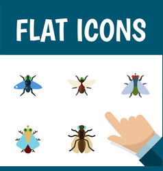 Flat icon fly set of fly mosquito bluebottle and vector