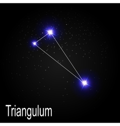 Triangulum constellation with beautiful bright vector