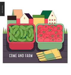 Urban farming and gardening - cucumbers and vector