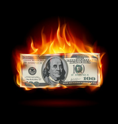 burning dollar on a black background for design vector image vector image