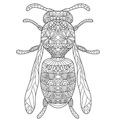 Wasp coloring for adults vector