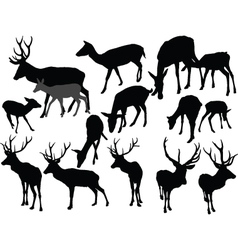 deer collection - vector image vector image