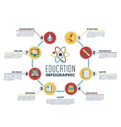 Education infographic chart with options vector image vector image