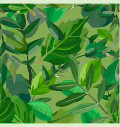 eucalyptus different tree foliage natural vector image vector image