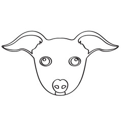 isolated italian greyhound avatar vector image vector image