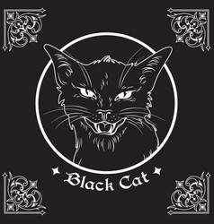 black cat head in frame witchcraft theme vector image vector image