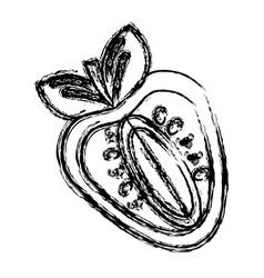 Contour strawberry fruit icon stock vector