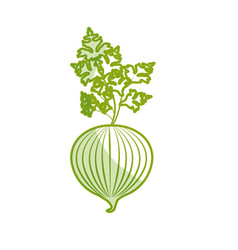 Silhouette fresh onion with plant organ food vector