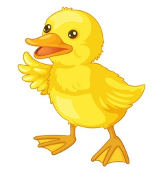 Cute cartoon duck vector