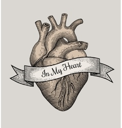 Engraving heart vector