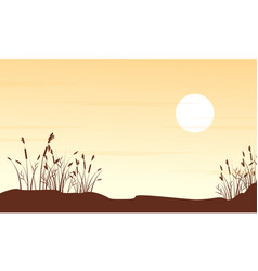 silhouette of grass on hill landscape vector image