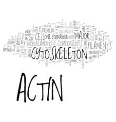 Actin antibody available in imgenex now text word vector