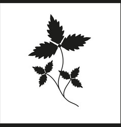 branch with leaves black silhouette closeup vector image vector image