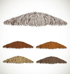 Mustache groomed in several colors set1 vector image