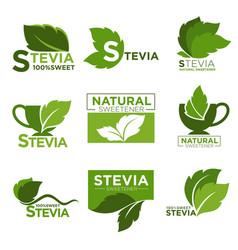 Stevia sweetener sugar natural substitute vector