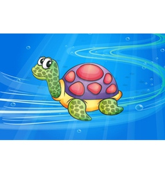 a tortoise vector image