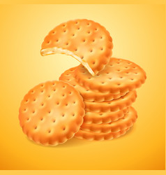 Round delicious cookies or crackers isolated on vector