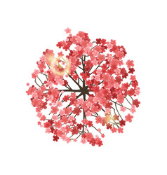 Spring tree top view vector