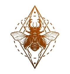 Beetle deer and geometric elements vector