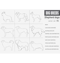 Dog breeds shepherd dog set icon flat style vector