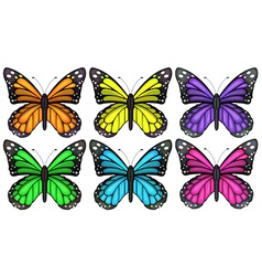 Colourful butterflies vector image vector image