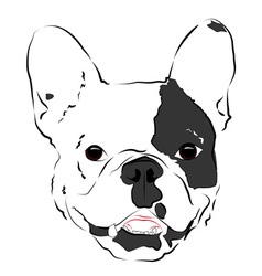 dog 2 vector image vector image