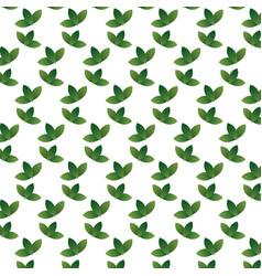 Pattern leaf color graphic collection on white vector