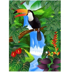 toucan bird in the jungle vector image