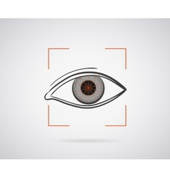 Eye identification vector