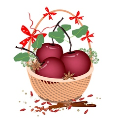 A brown basket of christmas apples and spices vector