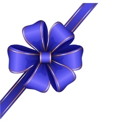 Blue gift bow with ribbon vector